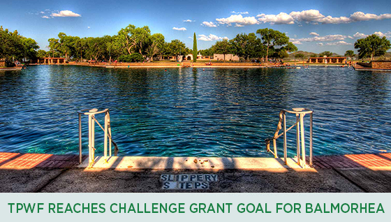 Story #4: TPWF Reaches Challenge Grant for Balmorhea Pool
