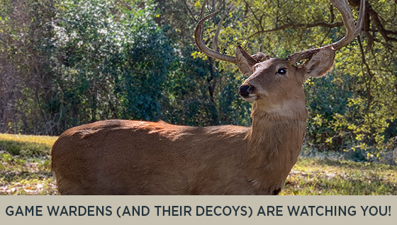 Texas Game Wardens (and their decoys) are watching you