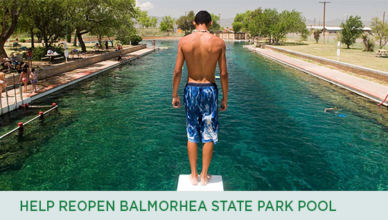 Story #5: Help Reopen Balmorhea State Park Pool