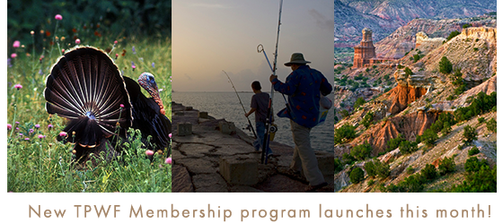 New TPWF Membership program launches this month!