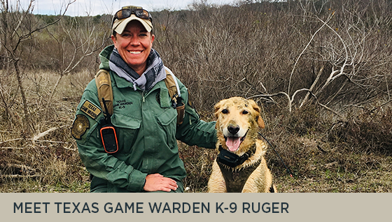Meet Texas Game Warden K-9 Ruger