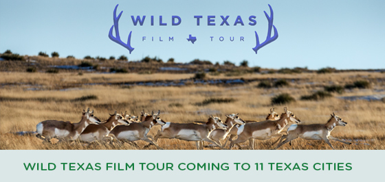 Story #1: Wild Texas Film Tour