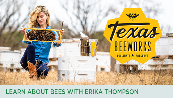 Story #2: Learn About Bees with Erika Thompson!