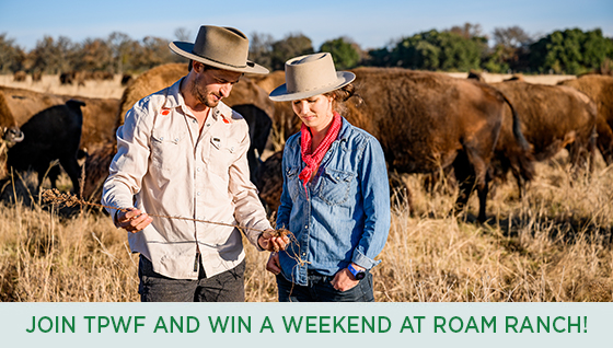 Story #2: Join TPWF and Win a Weekend at ROAM Ranch!