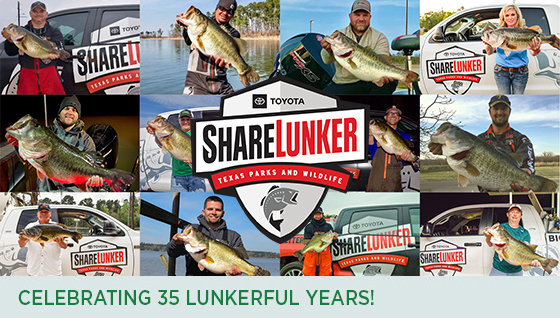 Story #2: Celebrating 35 Lunkerful Years!