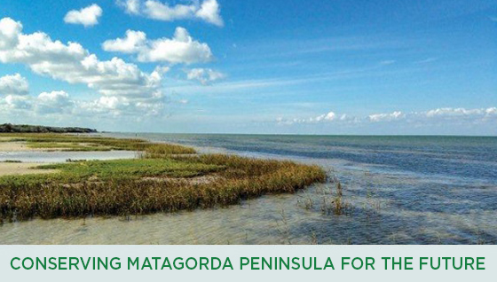Story #3: Conserving Matagorda Peninsula for Future Generations