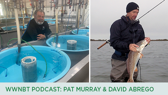 Story #3: We Will Not Be Tamed Podcast: Pat Murray & David Abrego