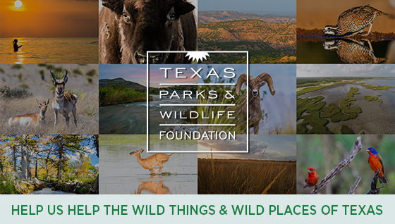 Story #4: Help us help the Wild Things and Wild Places of Texas