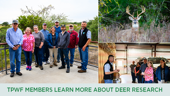 Story #4: TPWF Members Learn More About Deer Research