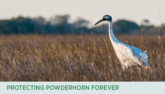 Story #4: Protecting Powderhorn Forever