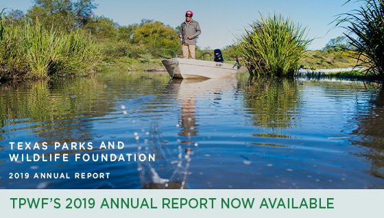 Story #5: TPWF's 2019 Annual Report Now Available