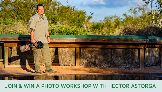 Story #5: Become a TPWF Member, Win a Photo Workshop with Hector Astorga