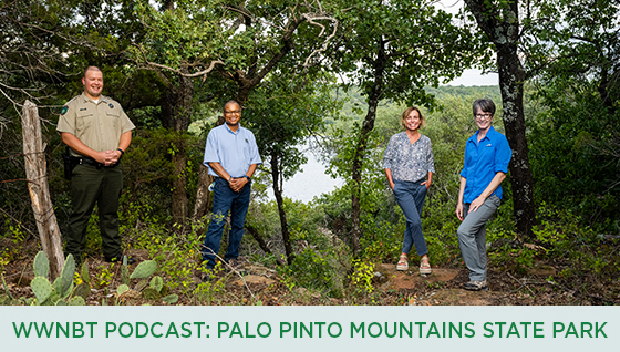 Story #5: WWNBT Podcast - Palo Pinto Mountains State Park
