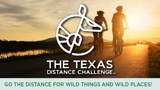 Story #5: Go the Distance for Wild Things and Wild Places!