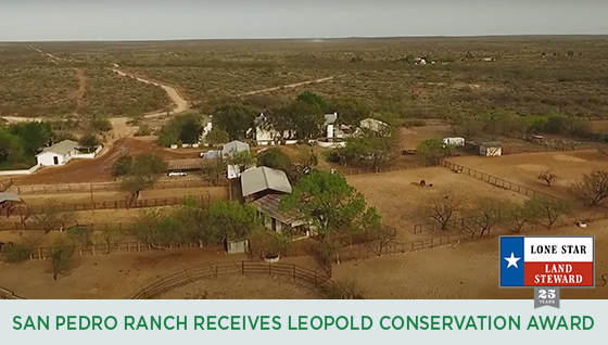 Story #6: San Pedro Ranch Receives Leopold Conservation Award