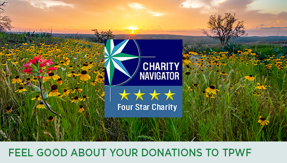 Story #7: Feel Good about Your Donations to TPWF
