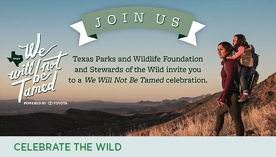 Story #5: Celebrate the Wild