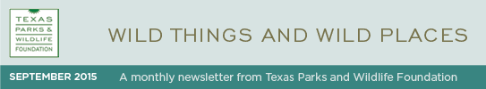 TPWF090_E-Newsletter_Sept2015_header