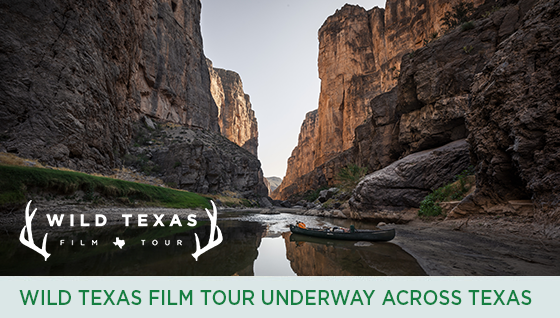 Story #4: Wild Texas Film Tour Underway Across Texas