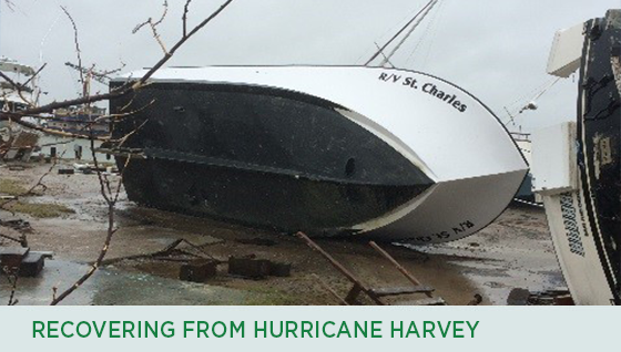 Story #3: Recovering from Hurricane Harvey