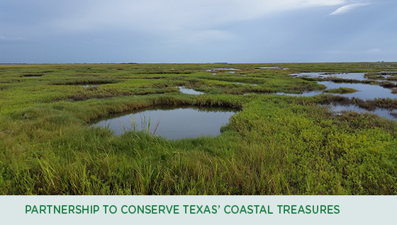 Forging public-private partnerships to conserve Texas' coastal