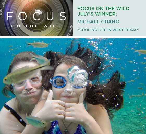 Focus on the Wild July Winner: Michael Chang