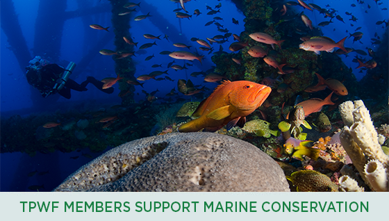 Story #2: Members Support Marine Conservation
